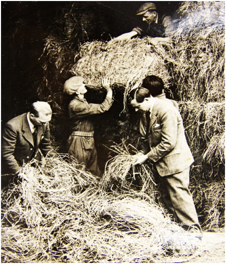 Photo of James Torrance (left) and Hugh Elder examine the quality of hay in the vast hay shed.