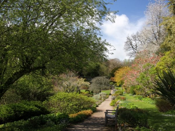 Photo of the Walled Garden at Wallington
